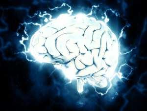 Gehirnwellen im Schlaf