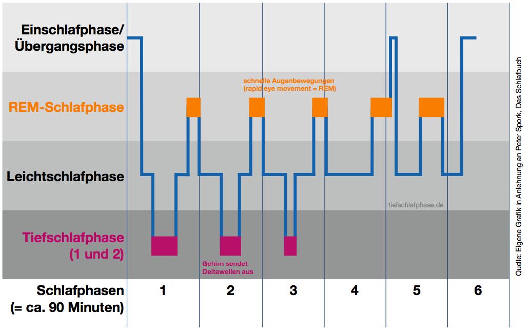 Infografik Schlafphasen - Tiefschlafphase.de